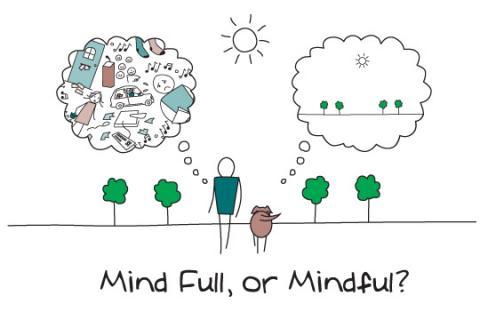 Mind Full or Mindfull